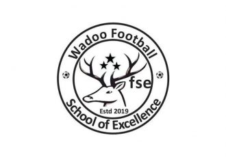 Wadoo Football School of Excellence