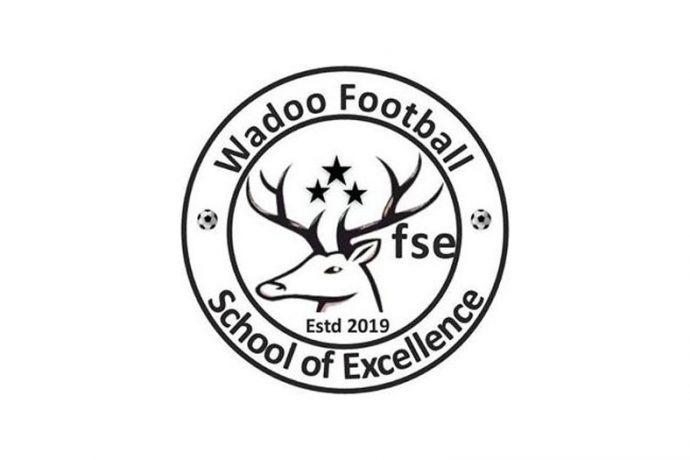 Wadoo Football School of Excellence
