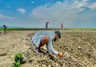 Indian international Amarjit Singh Kiyam helping out his family on their farm near Imphal. (Photo courtesy: Amarjit Singh Kiyam)